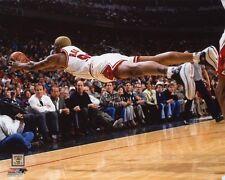 Chicago Bulls DENNIS RODMAN Glossy 8x10 Photo NBA Basketball Print Poster