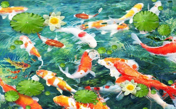 3D Goldfish pond 925 WallPaper Murals Wall Print Decal Wall Deco AJ WALLPAPER