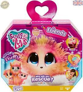 Scruff-a-Luvs-Friends-635ICE-Rescue-Pet-Soft-Toy-Dog-Cat-or-Llama-c1a100