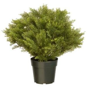 24-in-Artificial-Juniper-Tree-in-Green-Round-Growers-Pot-Plastic-Plant-Display