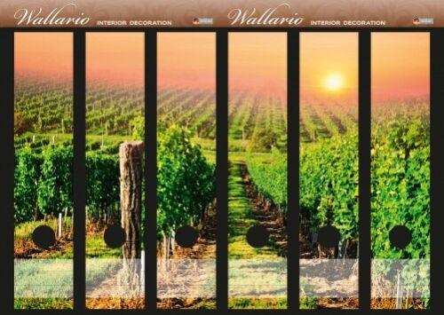 Wallario Ordnerrücken selbstklebend für 6 breite Ordner Weinberg Sonne Reben