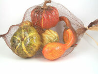 Bag Of 6 Mixed Gold Crackle Finish Artificial Pumpkins & Gourds