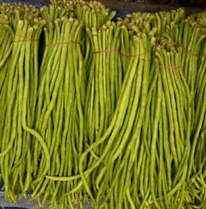 Seedeo ® Spaghetti Haricot Tapir (vigna Unguiculata) Environ 20 Graines Bio-afficher Le Titre D'origine