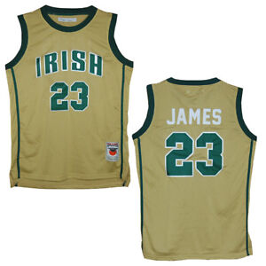 online store 0a749 ce939 Details about St. Vincent - St. Mary Fighting Irish Lebron James Gold High  School Jersey