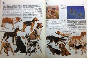 Zoo-books-Russian-book-Children-stories-Vintage-russian-books-Russian-kids-books
