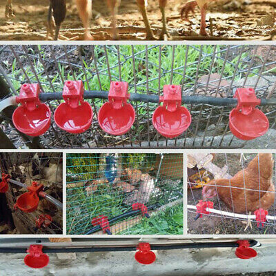 20* New Chicken Drinking Quail Waterer Bowls Bird Automatic Feeder Drinking Cups