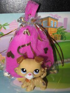 """Pet shop Chien Colley * Petshop Collie Dog # 2452 """" NEUF """" + Sachet Cadeau"""