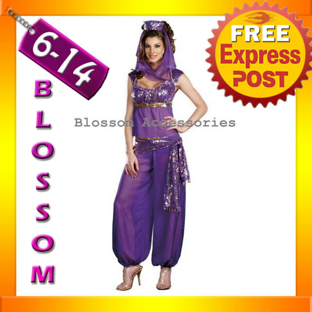 E20 Arabian Genie Aladdin Fancy Dress Up Costume Ladies
