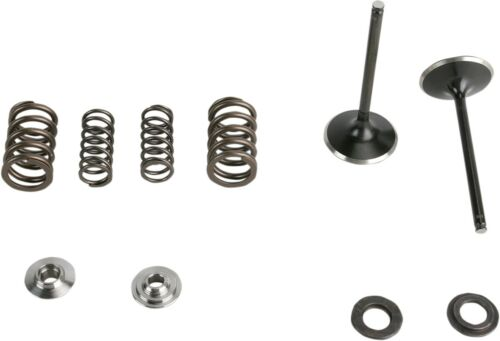 KibbleWhite Precision Intake Only Stainless Conversion Valve//spring kit 30-31210