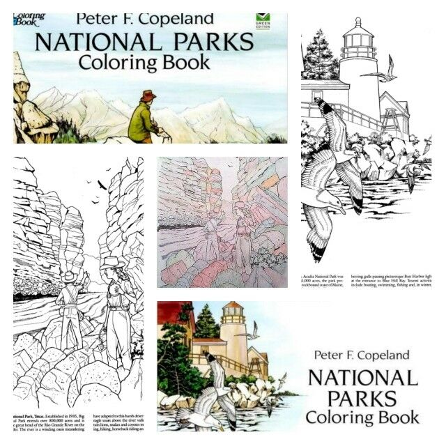 Nature Coloring Books for Adults Kids Colors Art Relaxing Anti ...