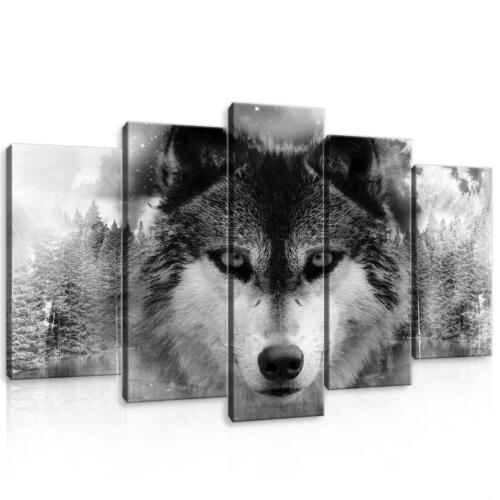 Canvas Canvas Pictures XXL Wolf Picture Wall Art 15F0105840