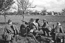 WWII B&W Photo Russian AT Gun Kursk PPsh  WW2 /1063