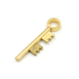 Golden-Moving-Skeleton-Key-Close-Up-Magic-Trick-Ghost-Haunted-Visual-Prop-Pip-BE