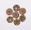 10X-Western-3D-Flower-Turquoise-Conchos-For-Leather-Craft-Bag-Belt-Purse-Decor miniature 52
