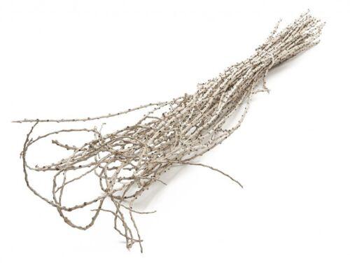 NaDeco® Bowty Zweige weiß ca 100cm 40Stk.DekobündelWeidenbündelNaturde