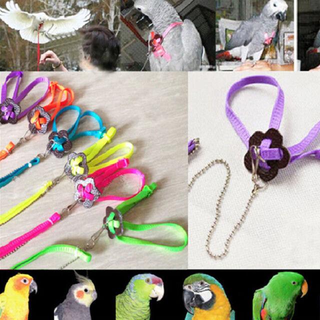 1X Fashion Design Parrot Bird Harness&Leash Anti-bite Adjustable Multicolor DD