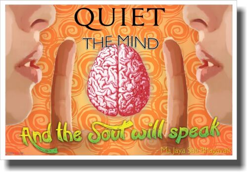 NEW Classroom Motivational Poster Quiet The Mind