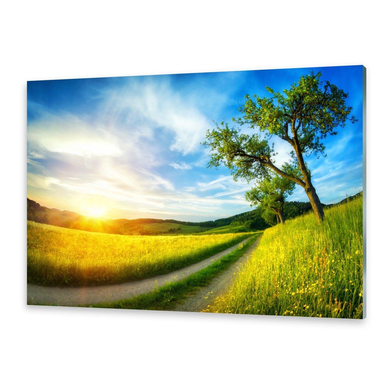 Acrylglasbilder Wandbild aus Plexiglas® Bild Wiese Baum