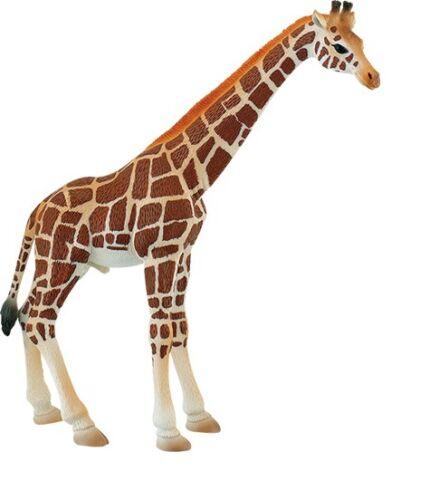 Girafes taureau 20 CM animaux sauvages Bullyland 63710 Nouveauté 2017