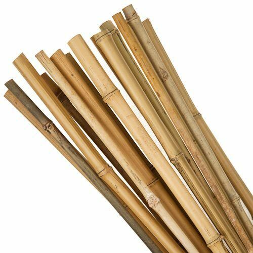 3ft BAMBOO CANES PACK OF 10 5 FREE LABELS