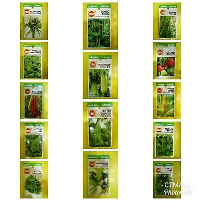 Seed vegetables Home Garden Plant and edible landscape