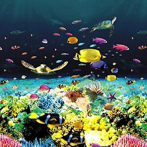 GREAT-BARRIER-REEF-HD-OVERLAP-Above-Ground-Pool-Liner-PREMIUM-EYE-POPPING