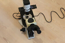 Olympus Ckx41 Inverted Phase Microscope