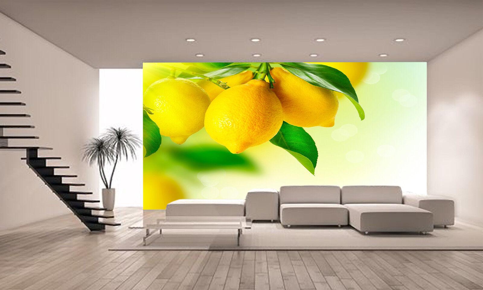 Lemon tree Wall Mural Photo Wallpaper POSTER GIANT WALL DECOR Free Glue Bedroom