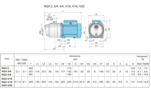 Jetpumpe Calpeda NGXM 3 700w 230v M Accensione//Spegnimento Cavo Spina U.
