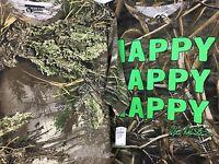 Camo Camouflage T-shirt / Book Lot (3) Men's Medium M Duck Dynasty Robertson