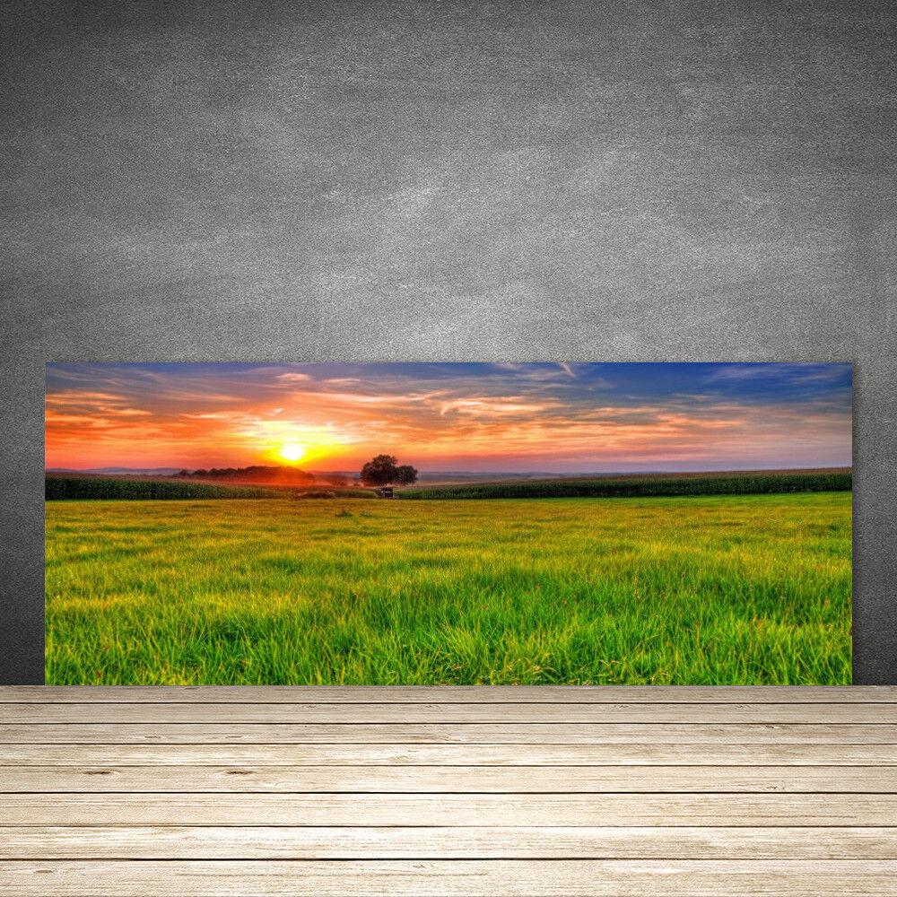Crédence de cuisine en verre Panneau 125x50 Nature Soleil Prairie