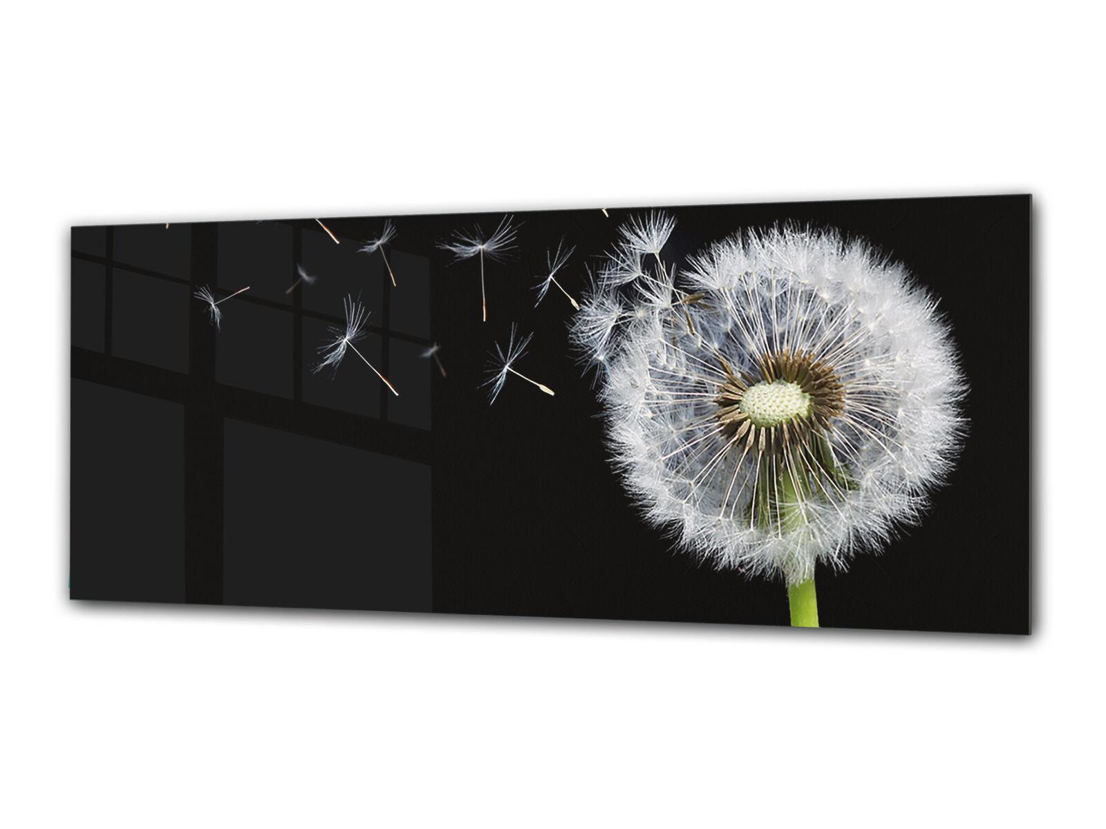 Glas Drucken Wand Kunst 80x30 cm Image on Glas Decorative Wand Bild 86302579