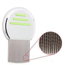 Lice Eggs On Comb