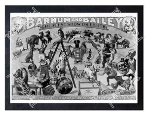 Historic-Barnum-amp-Bailey-Circus-1890s-Advertising-Postcard