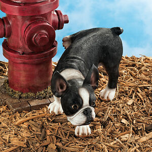 Good Image Is Loading Peeing Boston Terrier Garden Sculpture Home Dog Statue