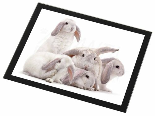 Cute White Rabbits Black Rim Glass Placemat Animal Table Gift AR-5GP