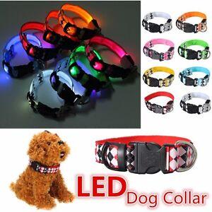 LED-Perro-Collar-Mascota-Parpadeante-Luminoso-Personalised-Seguridad-Iluminacion