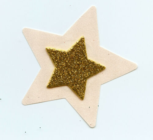 LINGERIE NIPPLE COVER 3D Gold Glitter Star on Nude Star Pasties retail $8.95