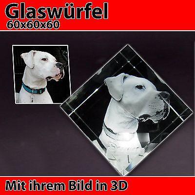 C80 Glas 3D Laser Foto Gravur Geschenkidee 2D in 3D zu Weihnachten Pferd Hund