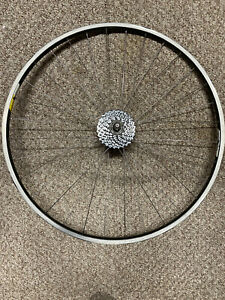 compagnolo Omega rim with 7 speed cog.