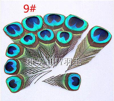 Wholesale 10-100PCS beautiful 2-18cm Pheasant tail & Peacock  feathers