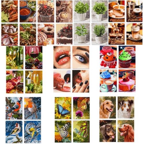 Malen nach Zahlen~Schipper~Tiere Lifestyle,Tiere Quattro je 4 Bilder à 18x24cm
