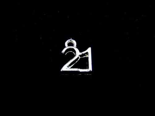 Plata Tibetana Cumpleaños edad encantos 11 Xvi Xviii Xxi 30 40 50 65 Ml