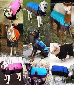 Waterproof Blanket 600D Dog Goat Alpaca MiniFoal Calf Piglet Sheep S M L XL XXL