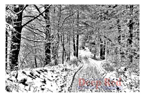 Image Is Loading Deep Red Rubber Stamp Snowy Path In The