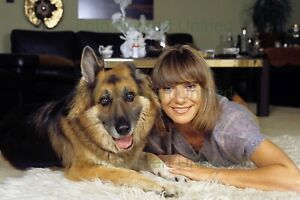 Judy-Winter-With-German-Shepherd-Dog-7-7-8x11-13-16in-Photo-Not-Signed-Nr-2-2