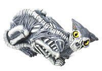 14 Zombie Haunted Ghost Cat Kitten Halloween Decoration