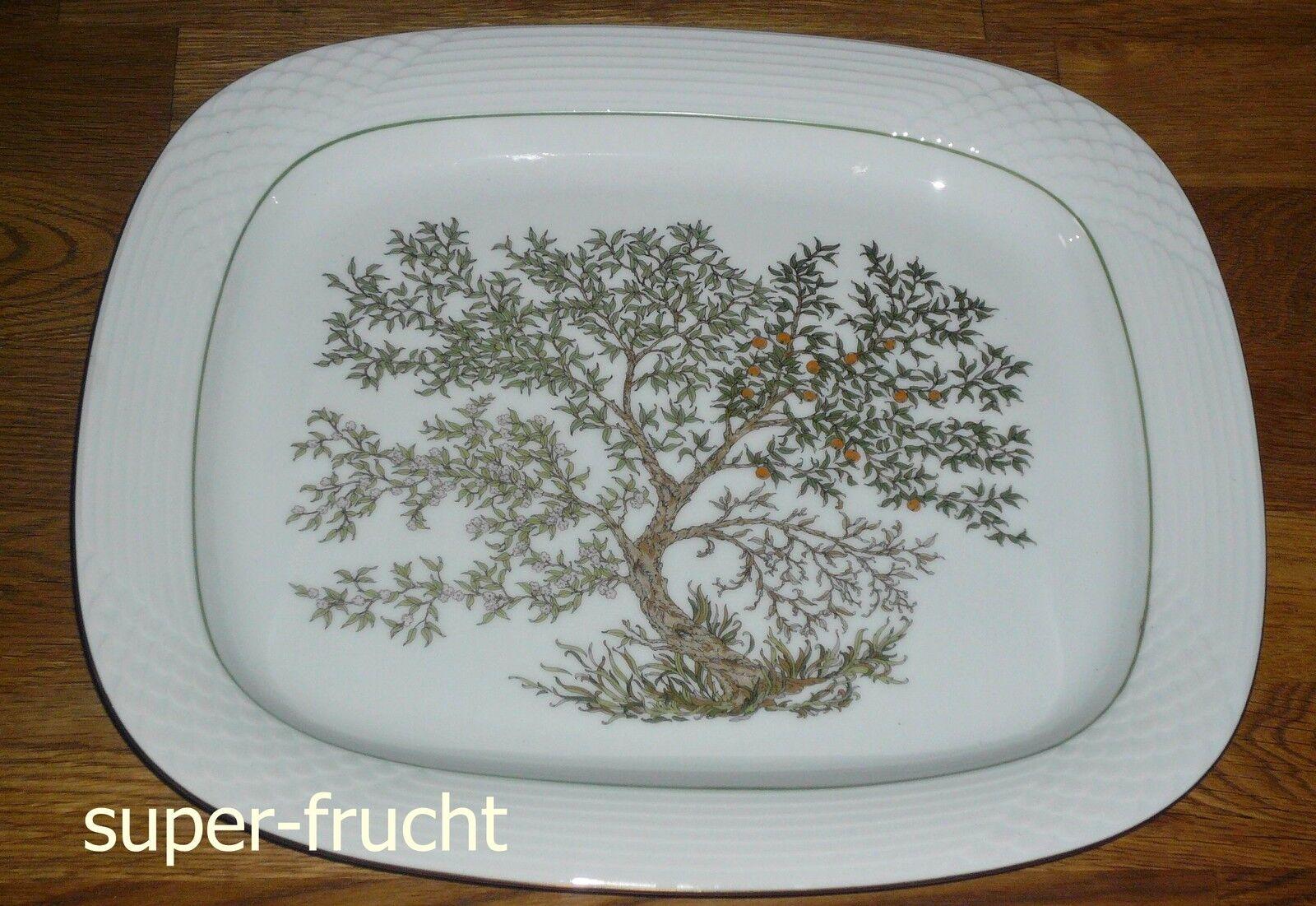 1 Platte  Servierplatte  30,5  26 cm   Hutschenreuther  SCALA PARADISO | Deutschland Berlin