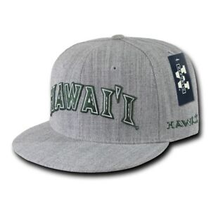 0c13552d6c7 Image is loading NCAA-Hawaii-University-Rainbow-Warriors-Game-Day-Fitted-