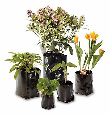 Poly Pots Strong Grow Bag Containers - Many Different Sizes - Plastic Plant Pot